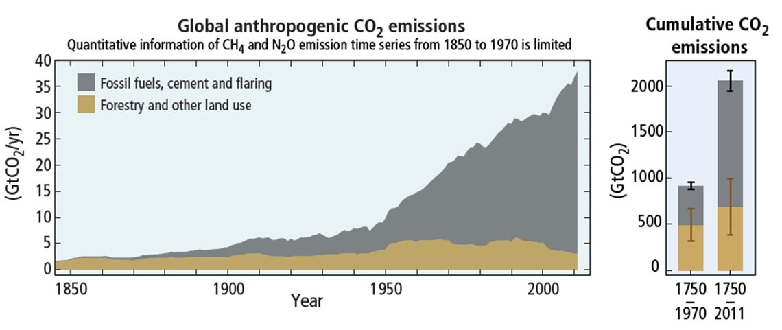 CO2 emissions by fuel type